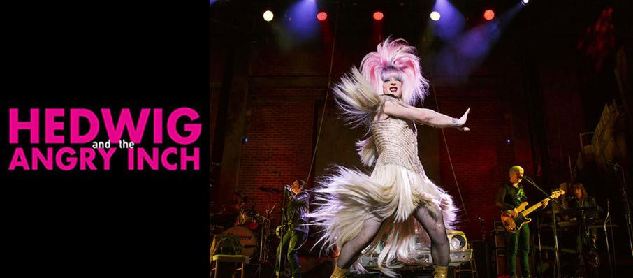 Hedwig and the Angry Inch at Phoenix Theatre