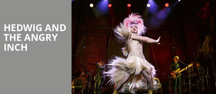 Hedwig and the Angry Inch, Phoenix Theatre, Phoenix